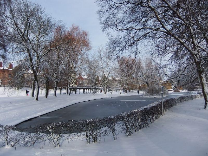 York 2012 022