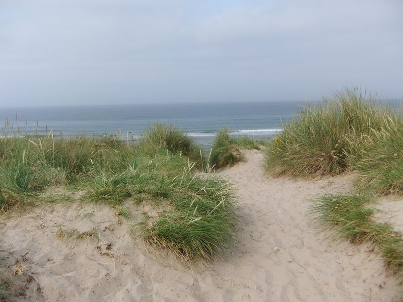 Northumberland July 2013 008